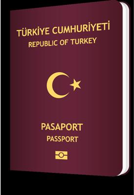 pasaport-tercumesi